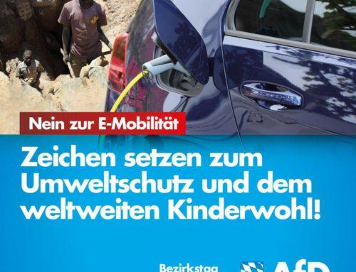 AfD-Fraktion lehnt E-Mobilität ab!